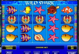 Wild Shark MCPcom Amatic Industries