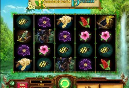Rainforest Dream Video Slots by WMS