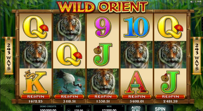Wild Orient Video slots by Microgaming MCPcom