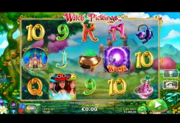 Witch Pickings Video slots by NextGen Gaming MCPcom